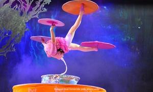 """Time Evento: Circo Imperial da China """"Espetáculo Guardiões dos Unicórnios"""" - Teatro Rio Vermelho: 1 ingresso"""