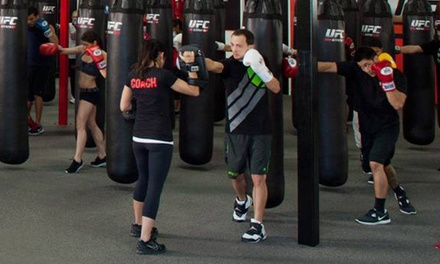 Two-Week Membership or One-Month Membership with Training Session at UFC Gym (Up to 66% Off)
