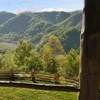 57% Off Cabin Stay at Three Bear Holler