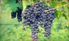 Up to 42% Off Chauffeured Wine Tour