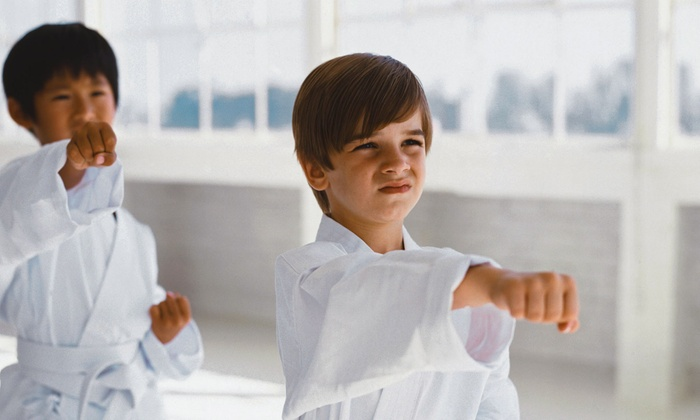 Lehigh Valley Martial Arts - Multiple Locations: $19.95 for Five Weeks of Unlimited Classes, One Private Lesson, and Uniform at Lehigh Valley Martial Arts ($350 Value)