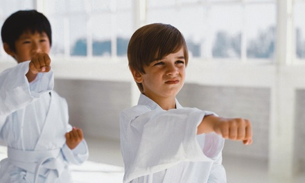 $19.95 for Five Weeks of Unlimited Classes, One Private Lesson, and Uniform at Lehigh Valley Martial Arts ($350 Value)