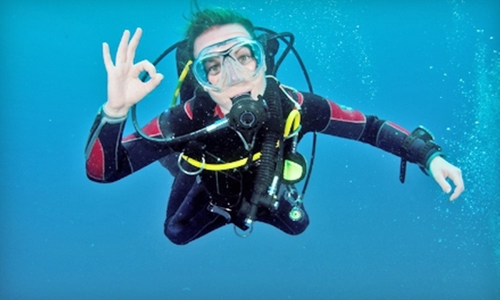 Dive Right In Scuba - Plainfield: Open-Water Dive Certification Course or Discovery Dive from Dive Right In Scuba (Up to 51% Off)
