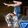 Up to 52% Off Dancing-Horses Show
