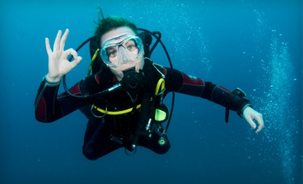 3-Hour Try Scuba Class for Beginners, Including a Pool Dive (a $25 value) - Smoky Mountain Divers in Kingsport