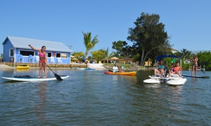 Wildlife Water Sports: Kayak, Paddleboard, or CraigCat Boat Rental for One or Two People from Wildlife Water Sports (Up to 51% Off)