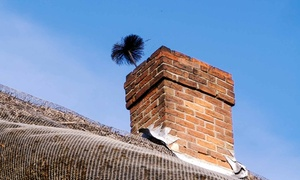 North America Chimney & Gutter: Flue-and-Chimney Sweep from North America Chimney & Gutter (Up to 54% Off). Two Options Available.