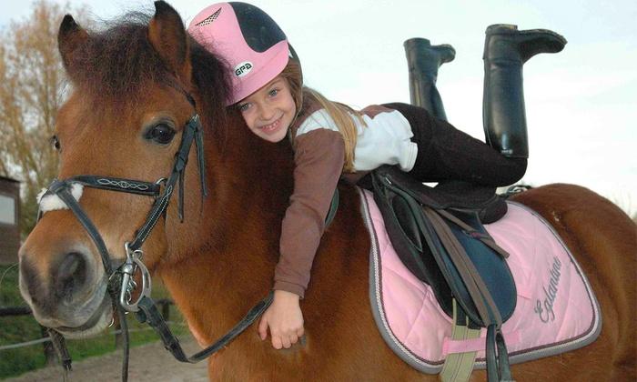 Domaine Equestre de Chevillon - Chevillon: Bourgogne : Séjour équestre de 8 jours en pension complète avec activités au Domaine de Chevillon pour 1 enfant