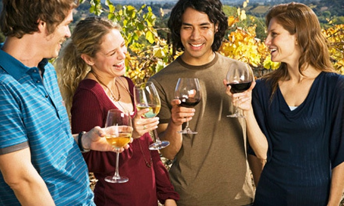 Skywater Georgia Wine Hiking - Multiple Locations: Easy or Moderate Hike for Two or Four from Skywater Georgia Wine Hiking (Up to 63% Off)