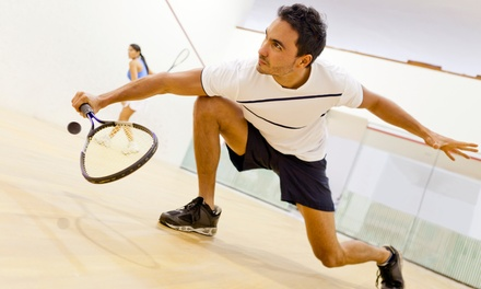 Squash Court and Racquet Hire for One $9 or Two Hours $16 at Daisy Hill Squash & Racquet Club Up to $60 Value