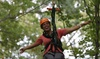 ZipZone Canopy Tours - ZipZone Canopy Tours: Zipline Tour for Two, Four, or Six at ZipZone Canopy Tours (Up to 35% Off). Six Options Available.