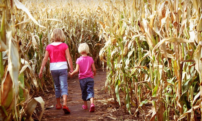 Rippavilla - Vintage Marketplace: Corn Maze and Hayride for Two or Four at Rippavilla Plantation (Up to Half Off)