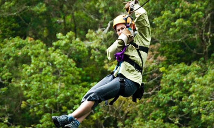 Wildman Adventure Resort - Niagara: Ziplining Tour for One, Two, or Four from Wildman Adventure Resort in Athelstane (Up to 54% Off)