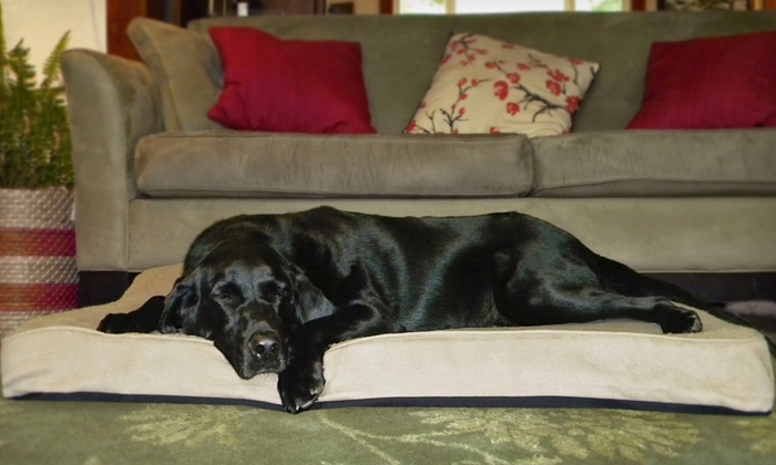 nap Orthopedic Pet Beds: nap Orthopedic Pet Beds. Multiple Colours and Sizes Available from $39.99-$54.99.
