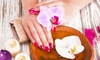Posh22 Salon and Spa - Coon Rapids: Manicure or Pedicure with Hot-Oil Treatment (Up to 44% Off)
