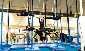 Vancouver Circus School: One-Week Full-Day Kids' Circus Day Camp at Vancouver Circus School (Up to 41% Off). Four Options Available.