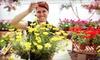 Half Off Plants and Flowers in Beecher
