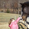 Up to 60% Off Kids' Horseback-Riding Lessons