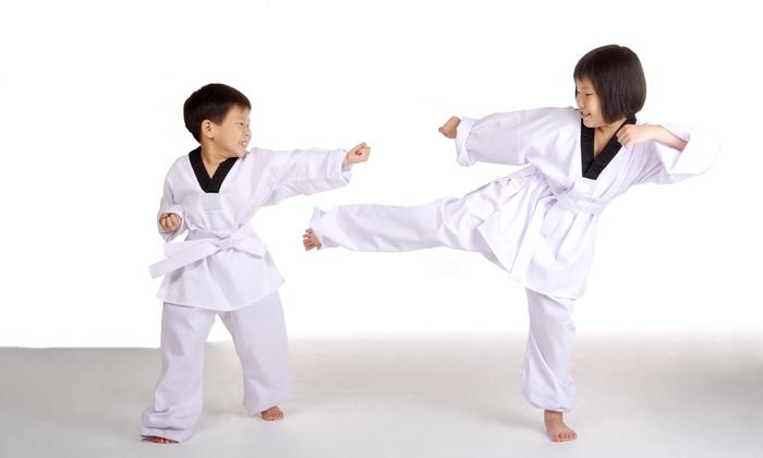 Homgs Taekwondo Inc. - West Allis: $36 for $120 Worth of Martial-Arts Lessons — Hong's Tae Kwon DO