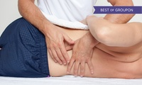 Four-Part Chiropractic Treatment with Back Scan for £27 at Back to Health Chiropractic Clinic, Five Locations (85% Off)