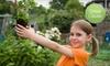 $10 Donation to Help Start School Garden
