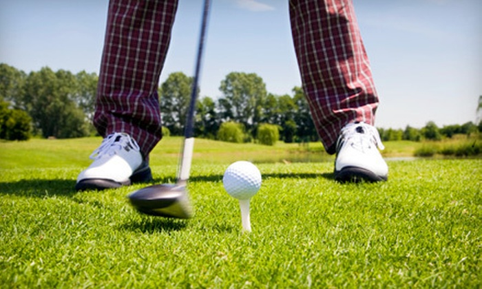 Mike Stevens On Target Golf Schools - Multiple Locations: $60 for Six-Week Golf-Lesson Program from Mike Stevens On Target Golf Schools ($125 Value)