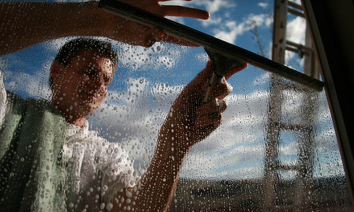 The Window Cleaner - Northeast Meridian: Window-Cleaning Services from The Window Cleaner (Half Off). Two Options Available.