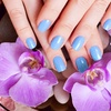 Up to 52% Off Gel Manicure at The Palace Nails