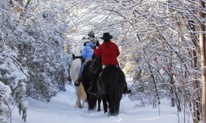 Carousel Horse Farm: Winter-Wonderland Trail Ride for One or Two at Carousel Horse Farm (50% Off)