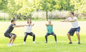 Bdfitlife: Five Boot-Camp Classes at BDfitlife (55% Off)