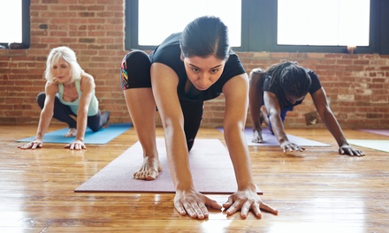 $70 for 10 One-Hour Low-Impact Group Exercise Classes ($140 value)