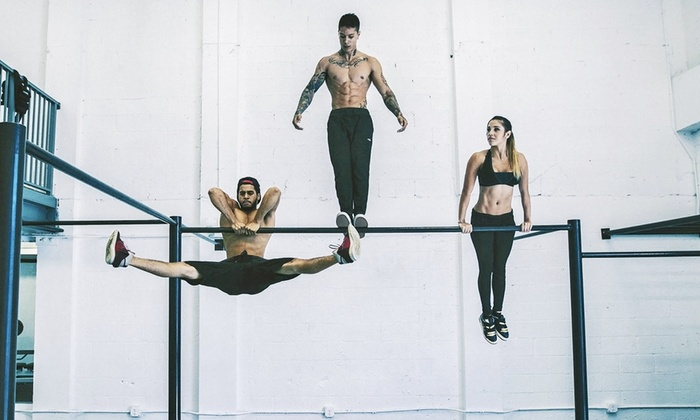 Calisthenics Academy - Bayshore: $62 for One Month of Calisthenics Classes at Calisthenics Academy ($250 Value)