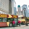 Big Loop or Historic Neighborhoods Tour