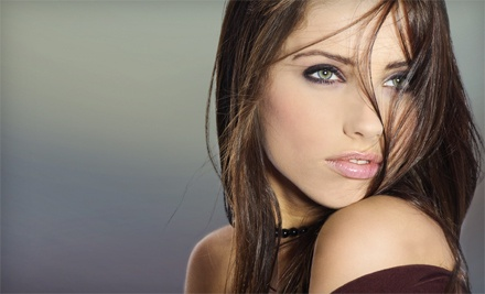 Haircut, Blow-Dry, and Style with Conditioning Treatment or Partial Highlights at Invidia Hair Design (Up to 53% Off)