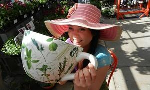 Susan's Coffee Bar: Four Medium-Size Cups of Coffee at Schmidt's Garden Center (67% Off)