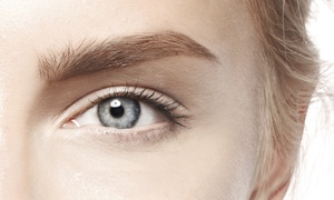 Eyebrow Grooming At Big City Brows (up To 60% Off). Five Options Available.