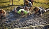 Abba Services, Inc - Omega Ranch:  for Xtreme Mud Warrior Race Registration for One at Omega Ranch on Saturday, November 1 ( Off)