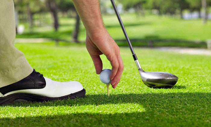 Gateway Golf Course - Montgomery: One or Two Private Video Swing-Analysis Sessions with Take-Home CD at Gateway Golf Course (Up to 57% Off)
