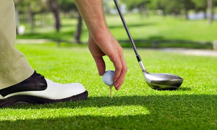 One or Two Private Video Swing-Analysis Sessions with Take-Home CD at Gateway Golf Course (Up to 57% Off)