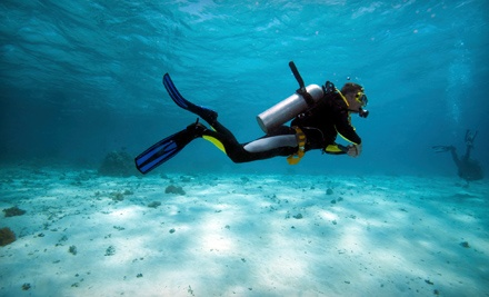 Beginner's Scuba Dive for One, Two, or Four with Gear Included at Big Kahuna Watersports (51% Off)
