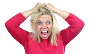 OC's Hair Police: $20 for $40 Worth of Lice Haircare — OC Hair Police