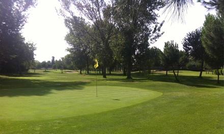 Green Fee de 18 hoyos para dos de lunes a viernes o en fines de semana desde 24,95 € en Golf Negralejo