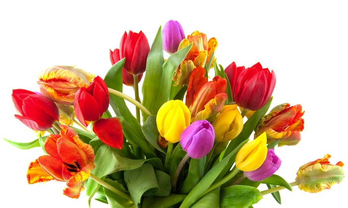 The Florist Center - Flamingo Groves: $15 for $30 Worth of Floral Arrangements at The Florist Center