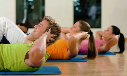 One or Three Months of Small-Group Personal Training at WellFit Private Fitness (Up to 89% Off)