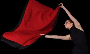 Akron Civic Theatre: Verb Ballets – Tribute to Heinz Poll on Friday, February 19, at 8 p.m.