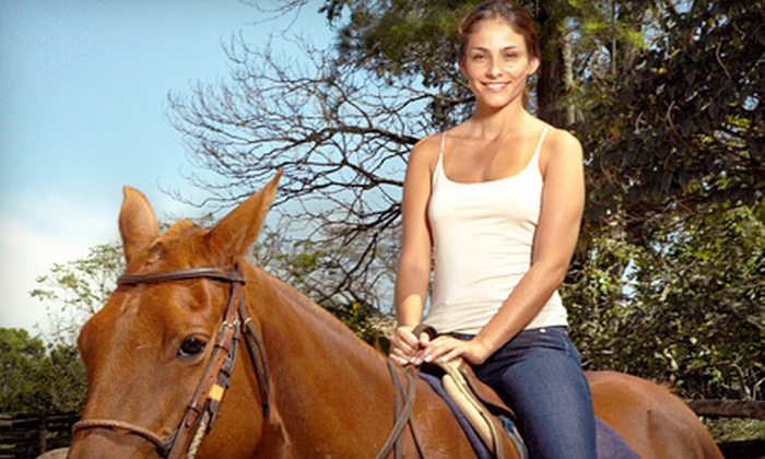 A Ranch 394, Inc. - Bloom: 60-Minute Trail Ride for Two or Four from A Ranch 394, Inc. in Chicago Heights (Up to 58% Off)