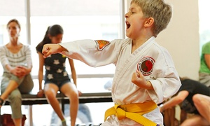 Unity Martial Arts: $59 for One Month of Unlimited Martial Arts Classes ($145 value)