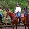 Up to 55% Off Farm Visits and Rides in Auburn