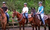 Morris's Shadow Mountain Stables - Lea Hill: Horseback Rides and Farm Visits at Morris's Shadow Mountain Stables in Auburn (Up to 55% Off). Five Options Available.