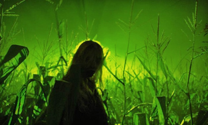 Deadwood Hollow - Killen: Haunted Corn Maze and Trail for One or Two at Deadwood Hollow (Half Off)